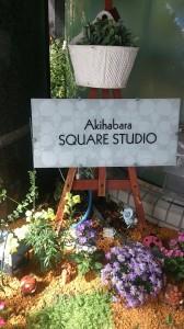 秋葉原 レンタルスタジオ 花壇の様子