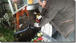 秋葉原 ダンススタジオ 花を植える